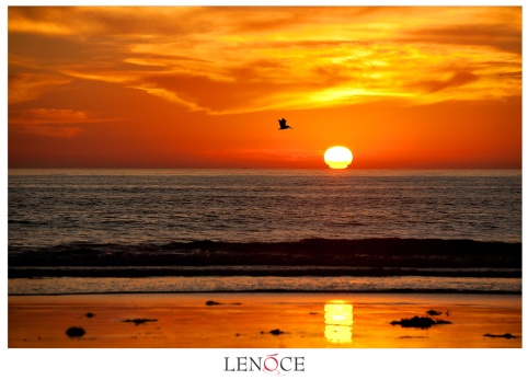 sunset-pacific-beach-copyright-lenoce1029
